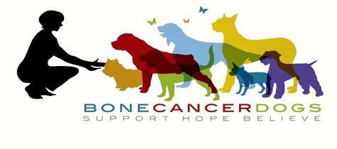 Bone Cancer Dogs - Great site with loads of information, support, resources, suggestions..