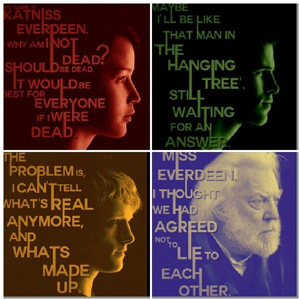 Funny Quotes About Hunger Games Mockingjay. QuotesGram