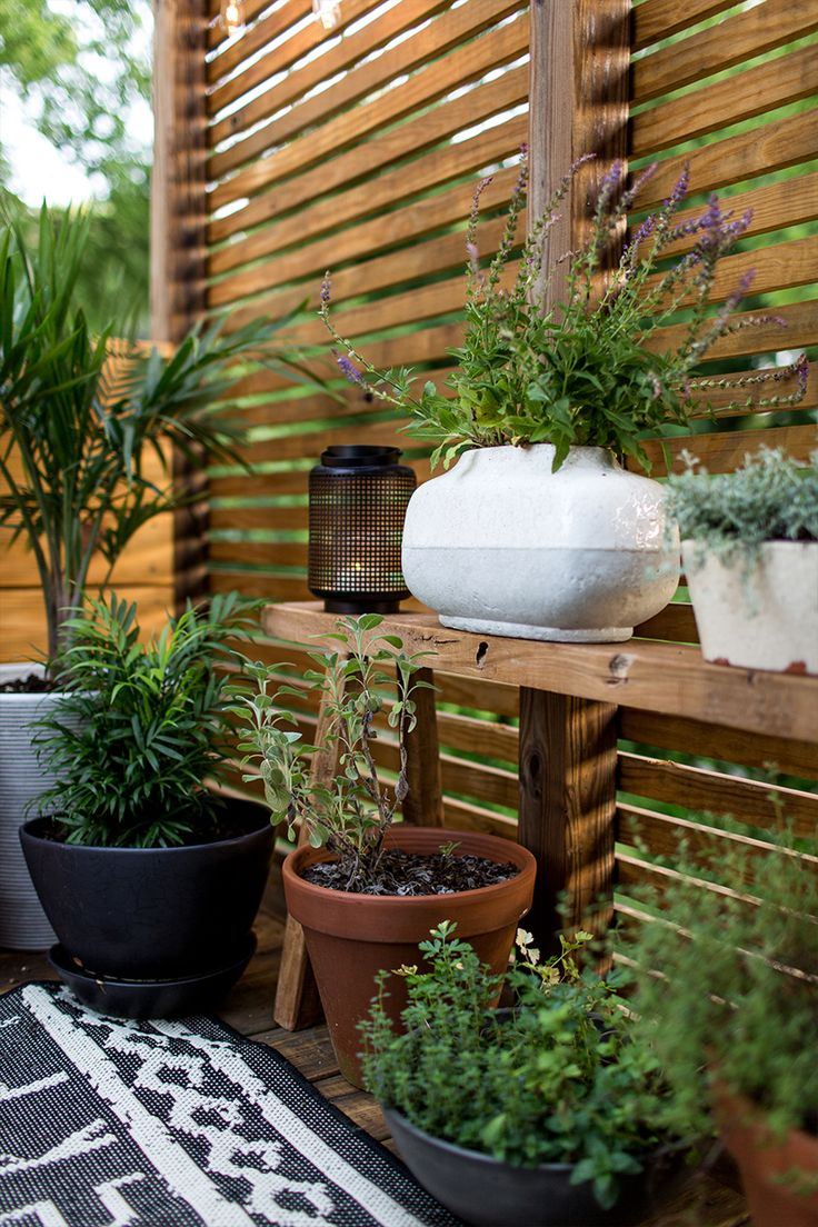 17 ideas about balcony privacy screen on pinterest wood for Privacy planters for decks