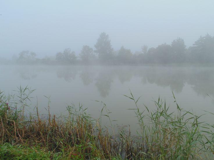 Dimineata de octombrie,la pescuit,pe olt...