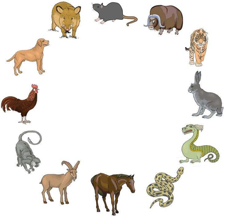 how to find your zodiac animal