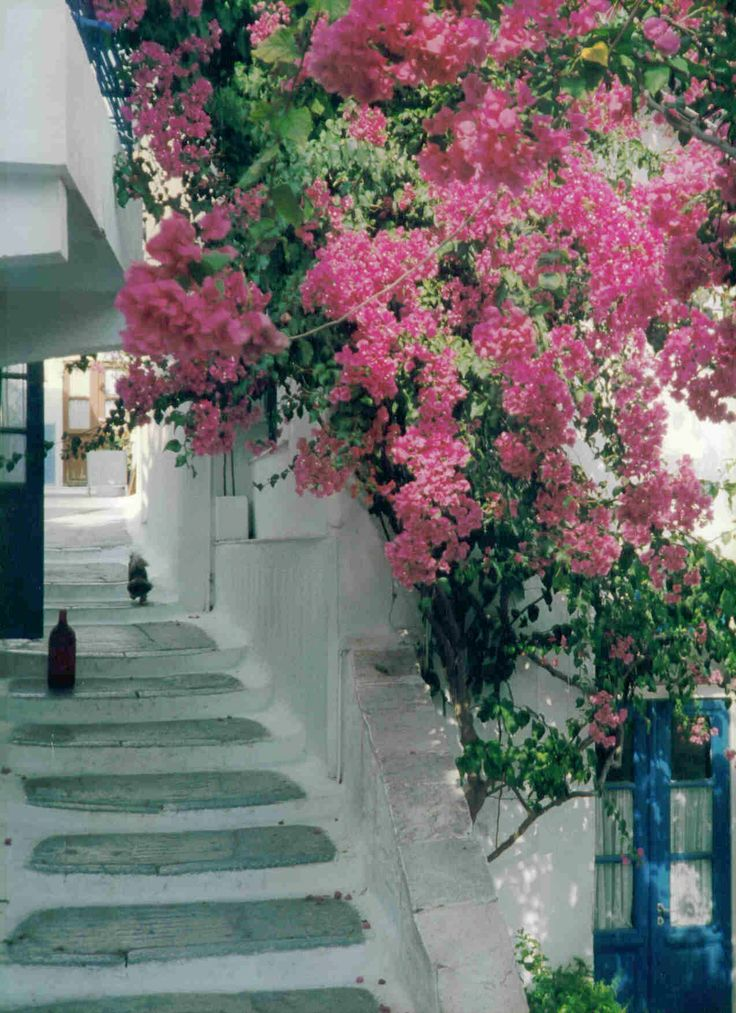 a walk up to Ano Syros