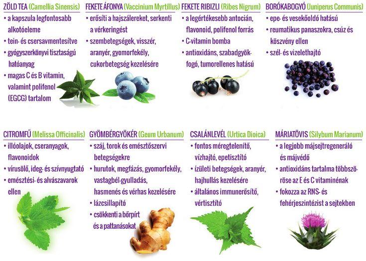 b-vitamin és visszér