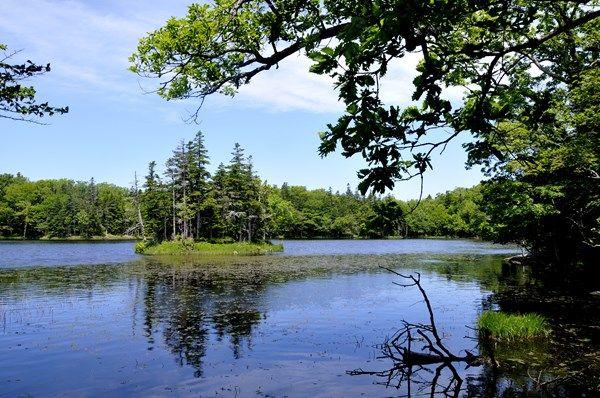知床 三湖 ▲湖畔の散策路をネイチャーガイドの案内で進みます知床五湖は、北海道東部の知床半島の中ほどにある5つの湖。「一湖」から「五湖」まで、数字の名前がついている湖の総称です。湖畔にある散策路からは知床の大自然を堪能でき、多くの人が訪れる有名な観光ス