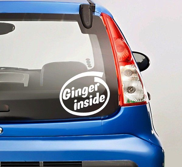 Best Funny Car Decals Images On Pinterest Car Decal Car - Funny decal stickers for carsbest funny car decales images on pinterest funny cars