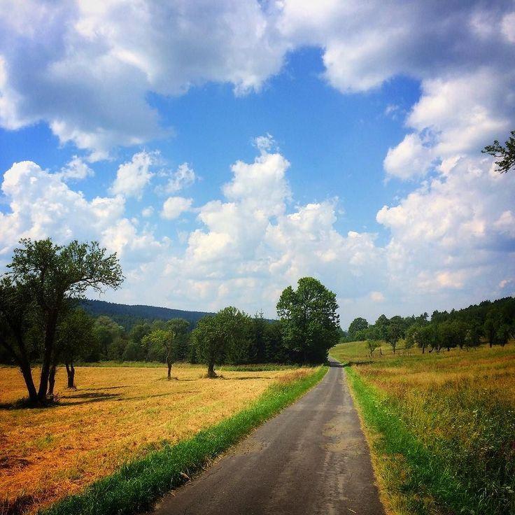 #Poland #Polska #trekking #mountains #instamountains #nature #naturephotography #naturephotos #natureaddict #natur_perfection #naturelovers #rsa_nature #rsa_mountains #bestnatureshot #landscape #landscape_lovers #instagood #photooftheday #picoftheday #pictureoftheday #bestoftheday #bieszczady #mobilnytydzienwakacje