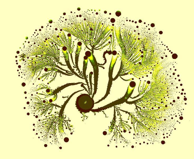 Bacteria As Art