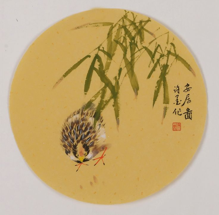 Chicken - CNAG001790