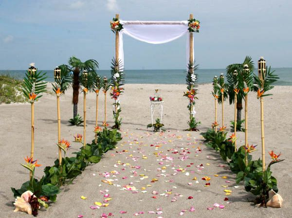 Get hitched in the tropics....