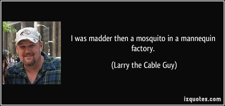 I was madder then a mosquito in a mannequin factory. - Larry the Cable Guy