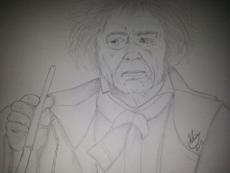 """The wand chooses the wizard, Mr Potter"" - Mr Ollivander, Wandmaker"