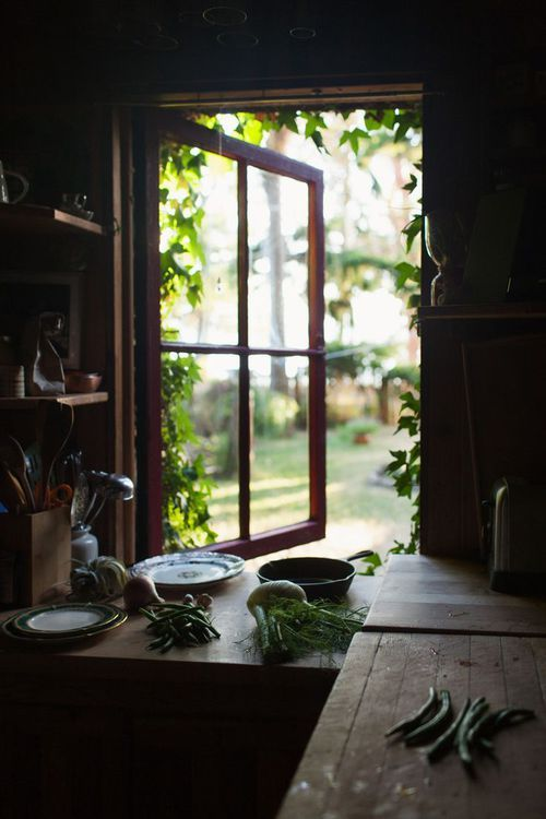 plants peeping from window (ideas for kitchen's window)