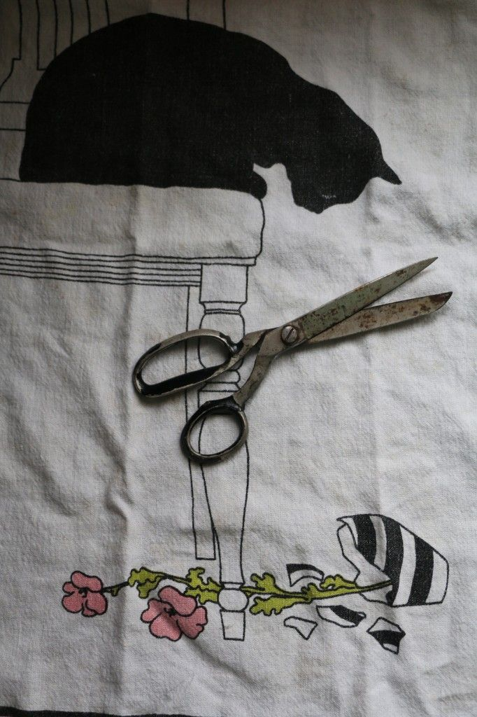 A Story About Rose, Mini Skirts and Kitchen Scissors