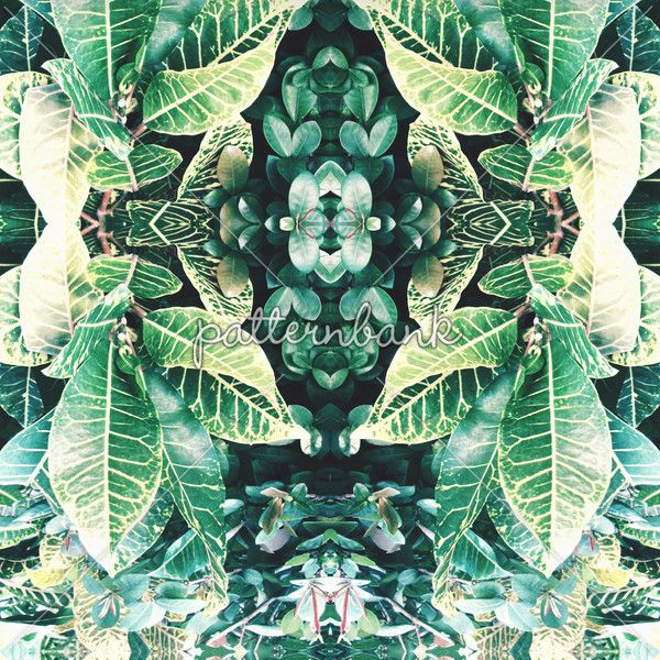 Tropical Mirror Repeat by Louise McNaughton - Tropical mirrored print. Seamless repeat digital using original tropical plant photographs.