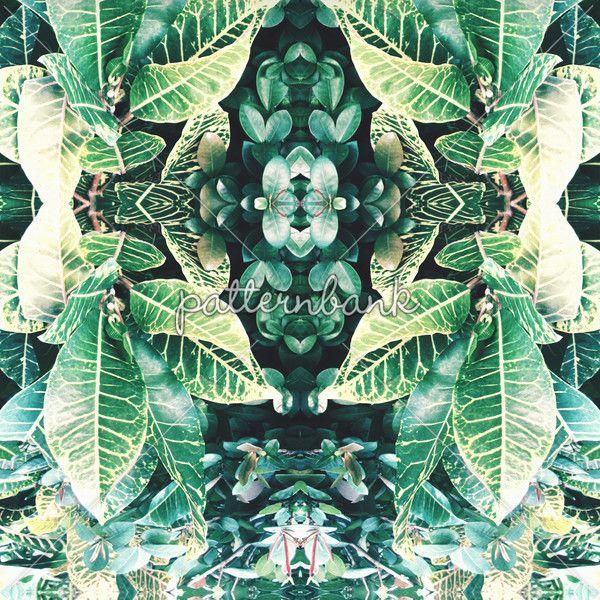 Tropical Mirror Repeat by Louise McNaughton - Tropical mirrored print. Seamless repeat digital using original tropical plant photographs.