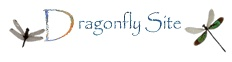 Dragonfly's are beautiful creatures