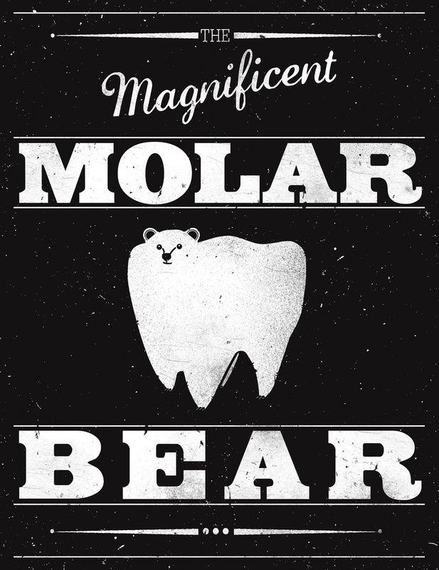 Molar Bear #dentist #humor