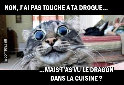 Non, j'ai pas touché à ta drogue… | Be-troll