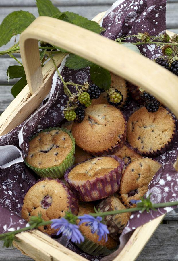 muffins med brombær