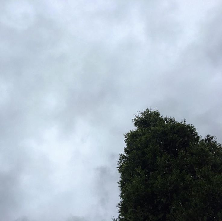 Those Portland skies yesterday 80 sunny  happy today 55 cloudy and lots of rain  #portland #sky #portlandsky #clouds #gray #pnw #upperleftusa #pnwisbeautiful #nature