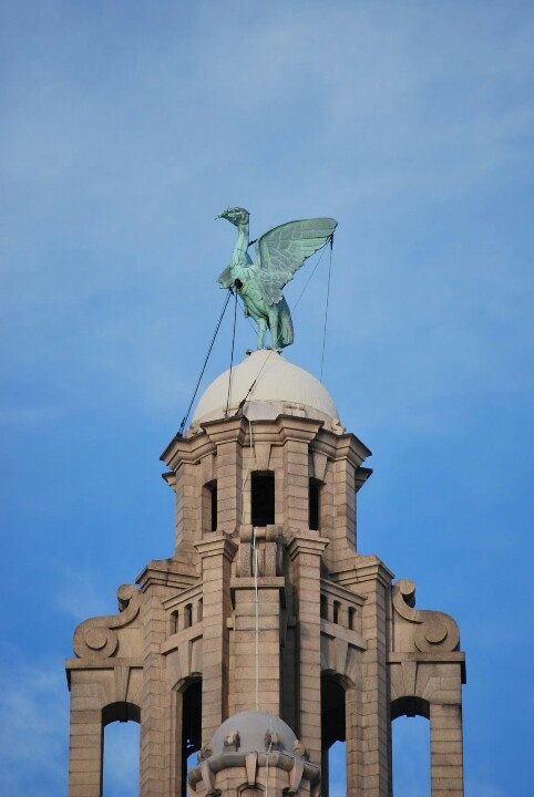 Liverpool Liver Bird