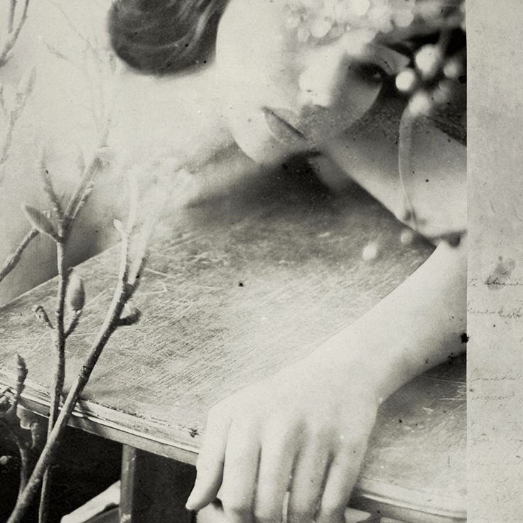 Rimel Neffati - Photography