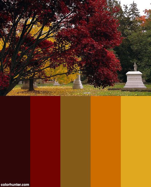 1000+ Ideas About Yellow Color Schemes On Pinterest