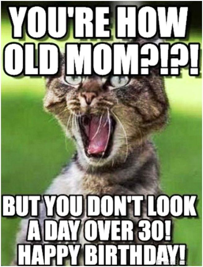 Happy Birthday Mom Meme In 2021 Cat Birthday Memes Funny Happy Birthday Meme Happy Birthday Meme