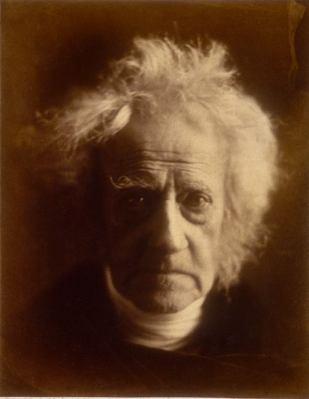 Sir John Herschel was an English mathematician, astronomer, chemist, and experimental photographer/inventor, who in some years also did valuable botanical work. (This photo was taken by Julia Margaret Cameron in 1867).