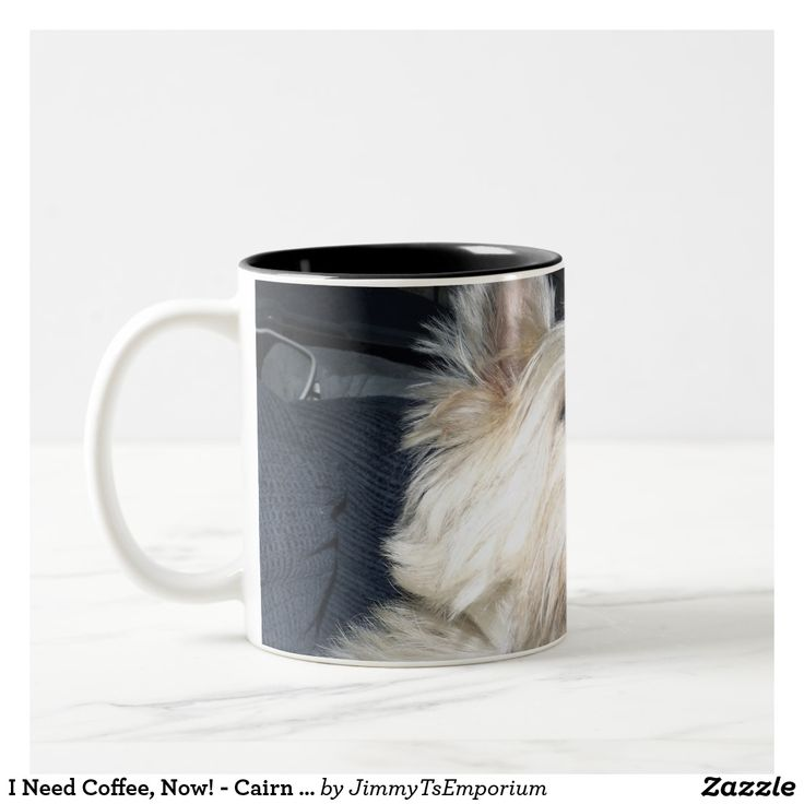 I Need Coffee, Now! - Cairn Terrier Dog