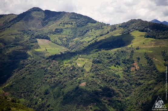 Mountains and coffee crops is the most popular combination in Colombia, that's one of the reasons of the particular flavor of our coffee.
