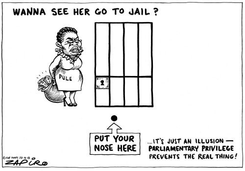 Oh Zapiro... Telling it like it is...