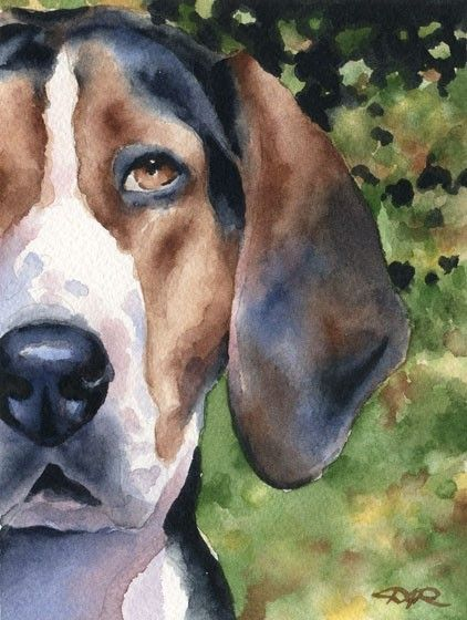 TREEING WALKER COONHOUND Dog Watercolor Signed Fine Art Print by Artist D J Rogers