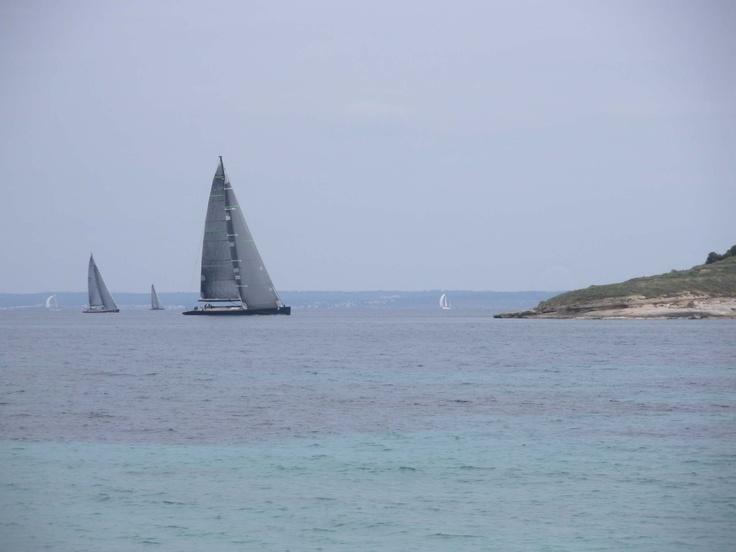 dark sails