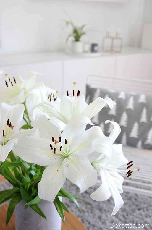 Dekottaa, valkoiset liljat