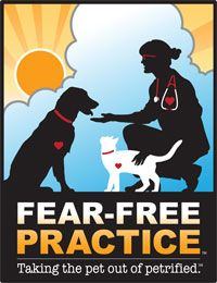 Top 10 ways to get started with Fear-Free veterinary visits (Sponsored by Boehringer Ingelheim Vetmedica Inc., Ceva, and Elanco)