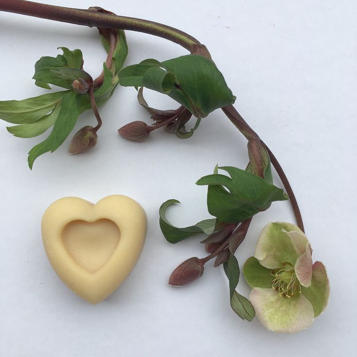 Natural goatmilk soap & hellebore
