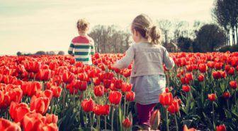 Eigenwijs blij knutselen spelen en tuinieren met jonge kinderen Geschreven door Cecile Bol voor Eigenwijs Blij.  Op moment van schrijven regent het nog maar laten we hopen dat de lente op het moment dat je dit leest echt is aangebroken. Tijd om eropuit te gaan! In dit artikel vind je een overzicht van dingen die je in de buitenlucht kunt doen met jonge kinderen. En is het weer buiten een keer helemaal niks dan kun je het binnen natuurlijk ook gezellig maken.  Lees verder…