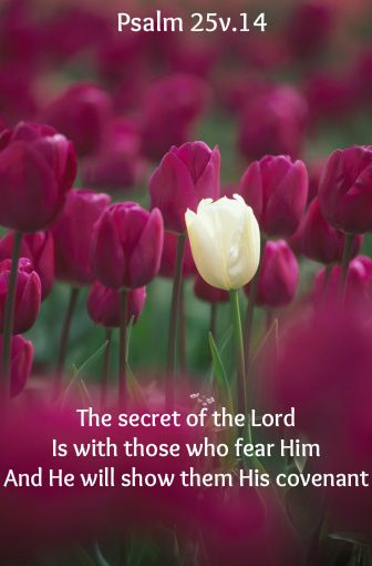 (Psalm 25:14) The Lord confides in those who fear him; he makes his covenant known to them.