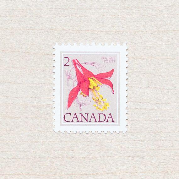 Wedding Invitation Envelopes Canada: 17 Best Ideas About Calligraphy Envelope On Pinterest