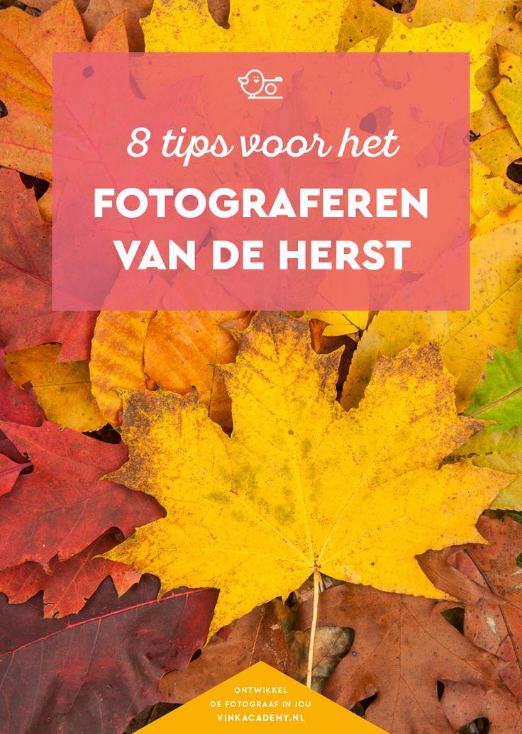 8 tips voor het fotograferen van de herfst – Diane Goncalves