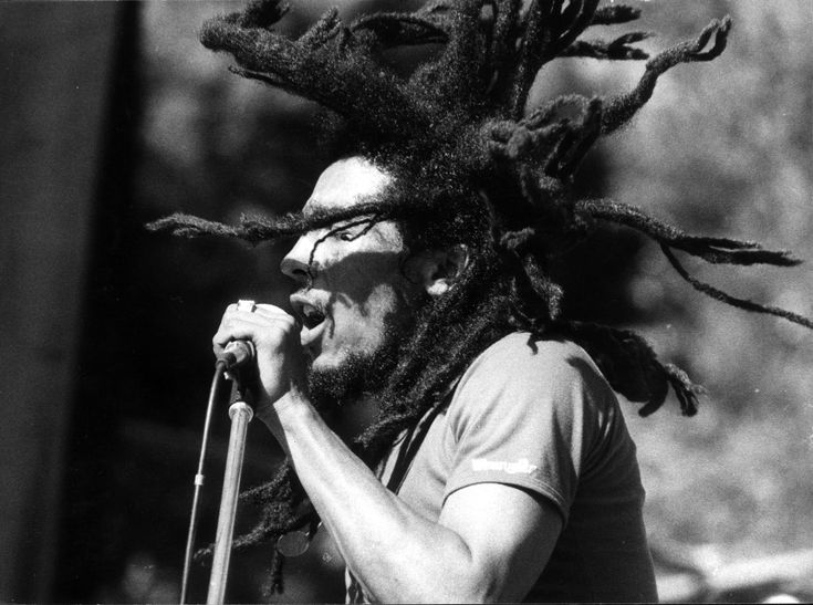 Bob Marley dreads flying