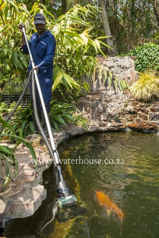 Pond Cleaner  This pond cleaner acts as a vacuum to suck up any blanket weed, algae or sludge in  your pond.   With a handy 6 metre hose you can reach anywhere.   Contact www.waterhouse.co.za today for more information.