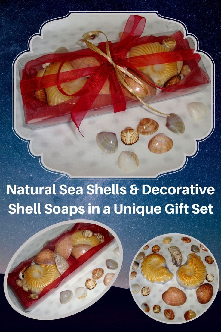 Natural Greek Sea Shells found on the beaches of Paros island (Aegean Sea) in a Red Color very nice decorated Handmade Gift Set with two golden cream Decorative Scented Luxury Soaps in pomegranate-berry perfume. Sea shells and natural handmade glycerin shell soaps for Greek Beaches memories and Aegean Seas Breath of Fresh Air!  We love red color all year, but the red is especially exciting at feast times, like Father's Day. A very elegant, stylish gift for Father's Day or for any other o