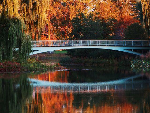Chicago Botanic Garden in the fall.