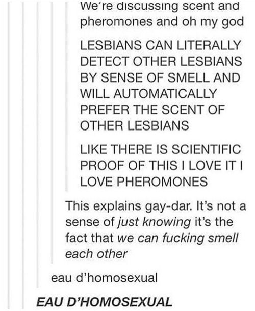"scientific explanation of ""The Gay-dar"""