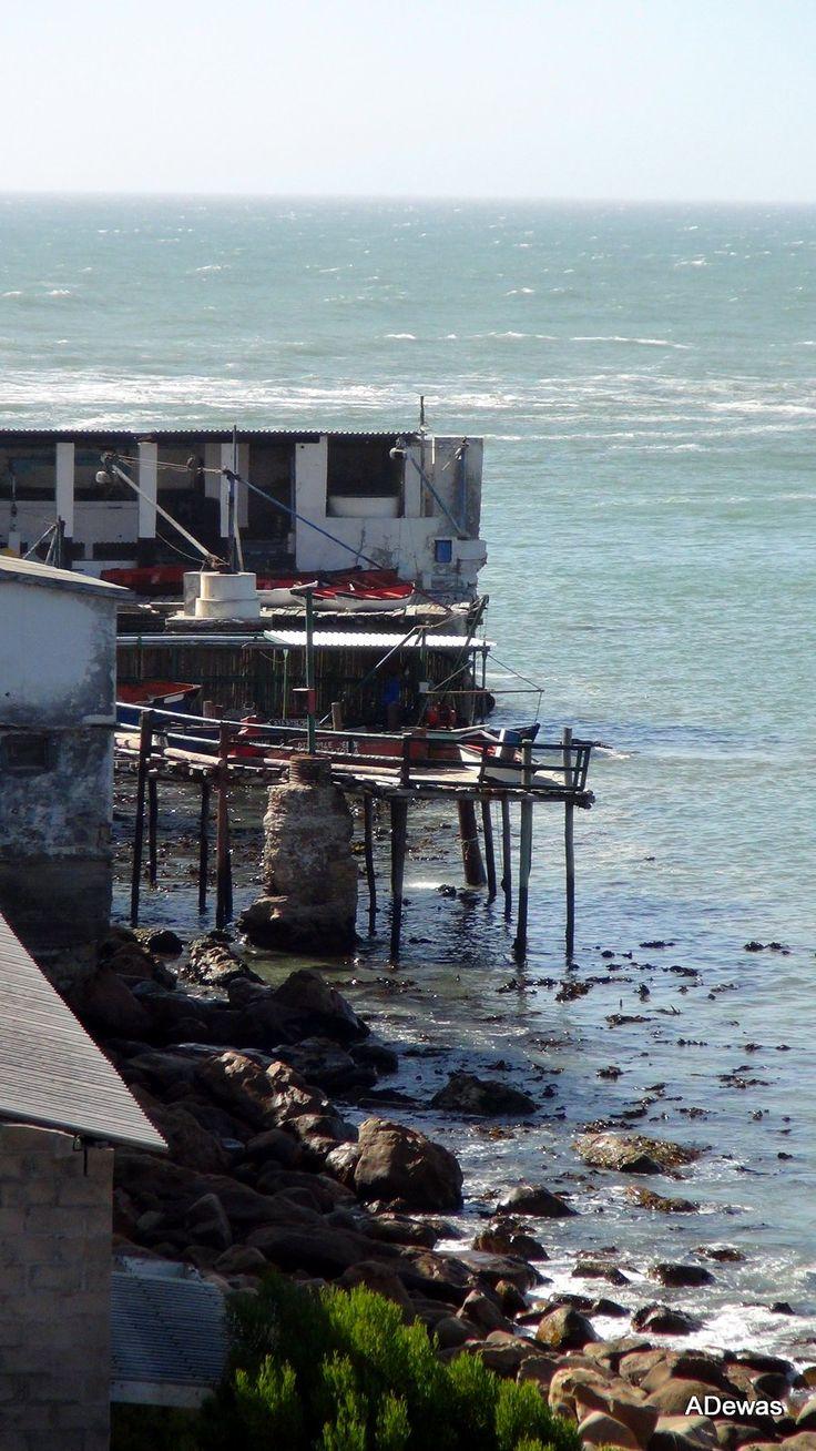 Elandsbaai Fishing Harbour   Dec 2014