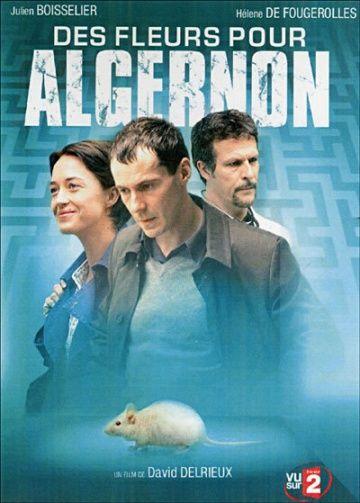 Цветы для Алджернона (Des fleurs pour Algernon)