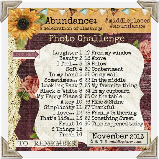 November Photo Challenge: Abundance Let's document the abundance in our lives with photos. :D