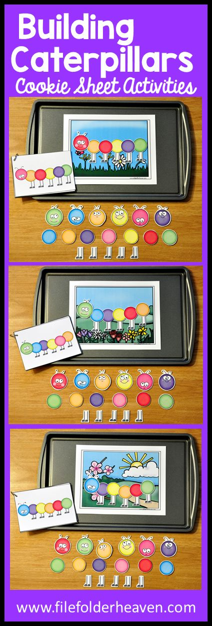 These Spring Activities: Building Caterpillars can be set up as cookie sheet activities, a magnet center or completed as cut and glue activities. This set includes three spring backgrounds, 10 caterpillar example cards, and caterpillar building pieces (all in color). In this activity, students work on visual discrimination skills, recognizing same and different, and replicating a model.